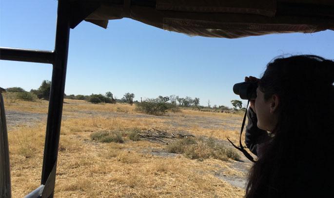 De safari en Moremi