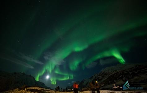 Auroras espectaculares y naturaleza en estado puro