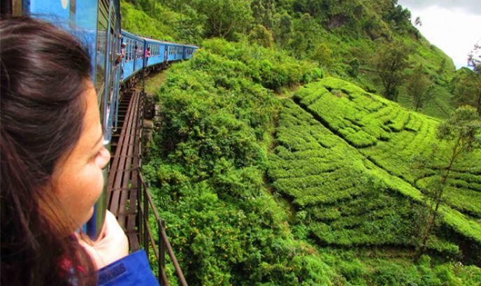 Macarena en el tren del té