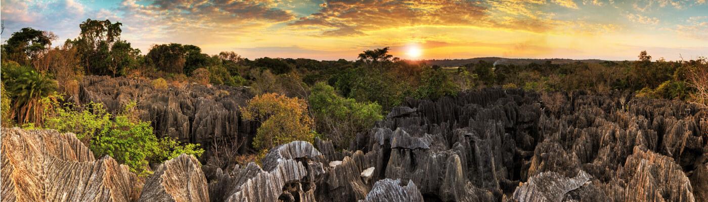 Tsingys de Bemaraha