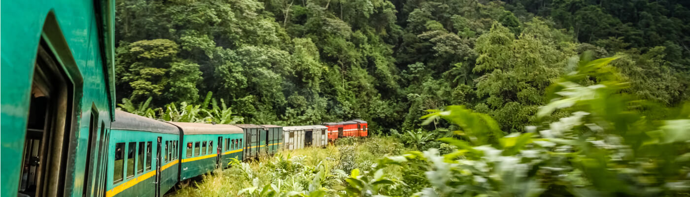 Tren de la Selva