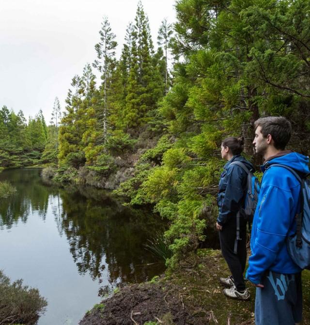 Trekking en la impresionante zona boscosa de Misterios Negros