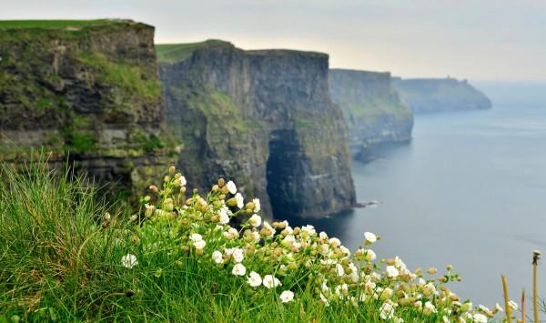Acantilados de Moher. Viaje a Irlanda con PANGEA The Travel Store