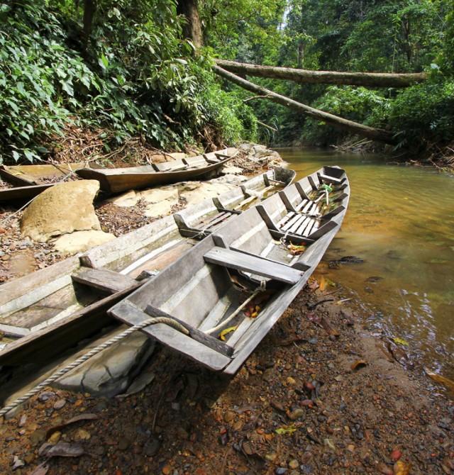 Tribus nativas en un ecosistema natural en Malasia