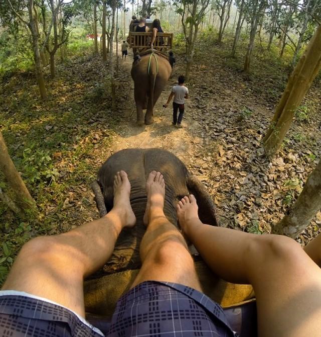 Paseo en elefante en Taro en Indonesia