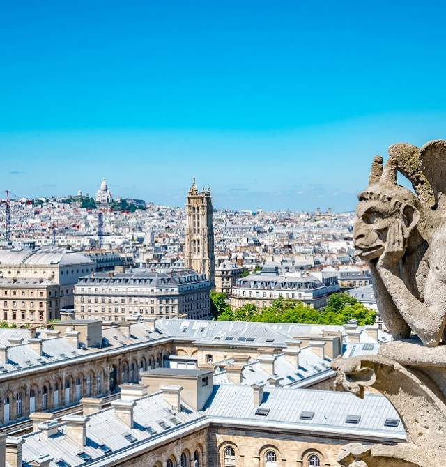 París desde Notre Dame en Francia