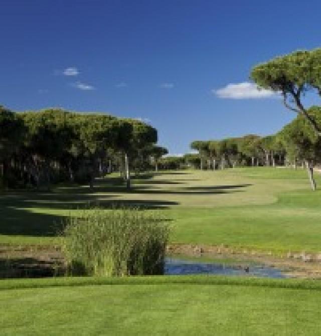 Seis Campos de Golf