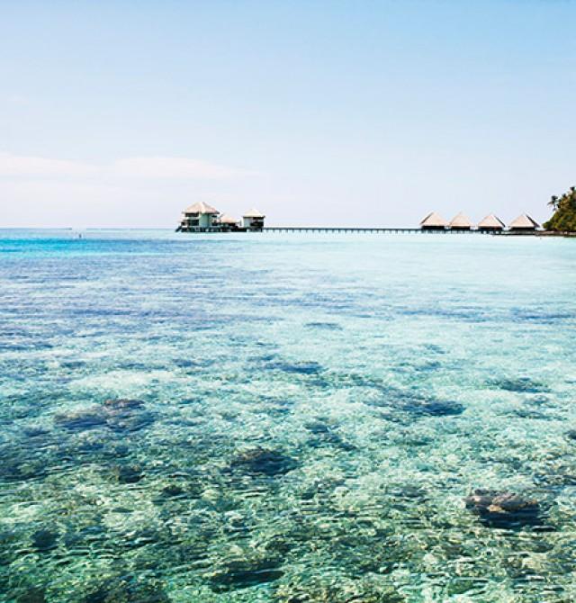Tokio - Maldivas