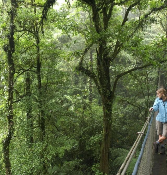 Albergue Los Campesinos en Costa Rica