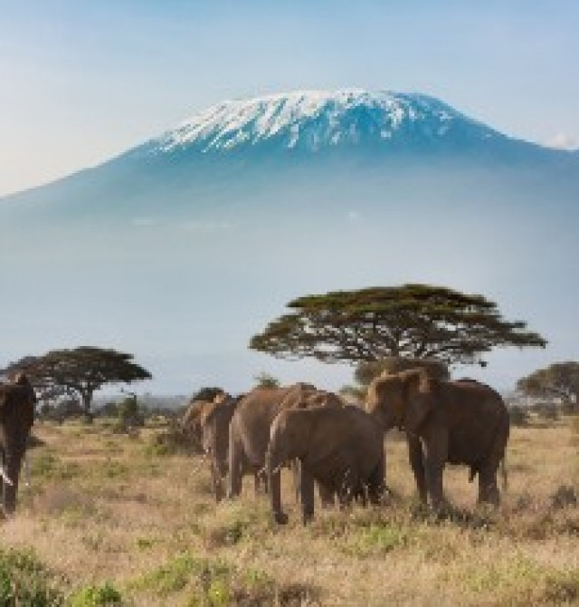 Amboseli en Kenia