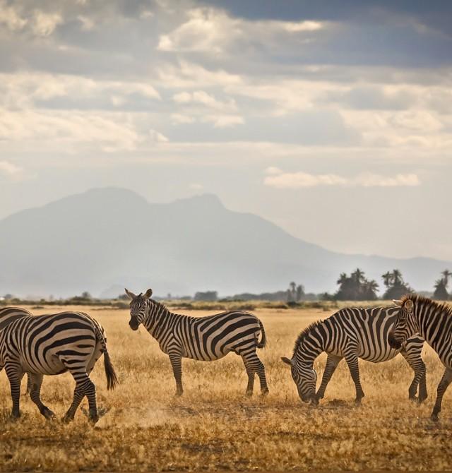 en Kenia