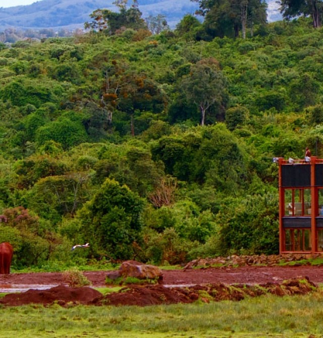 Aberdares en Kenia