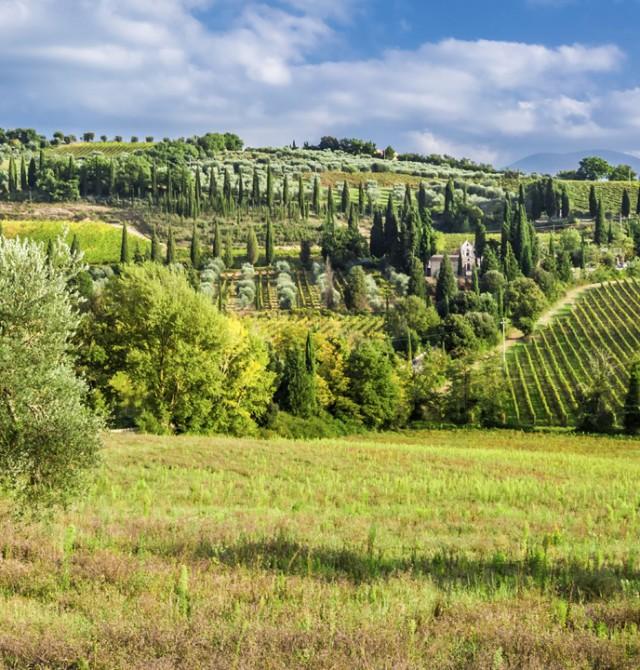 Gimingnano - Siena en Italia