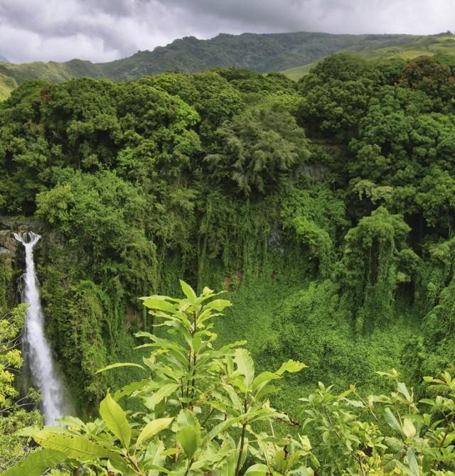 Hawaii en Estados Unidos