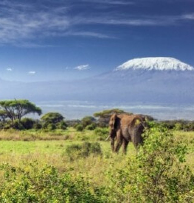 España - Kilimanjaro