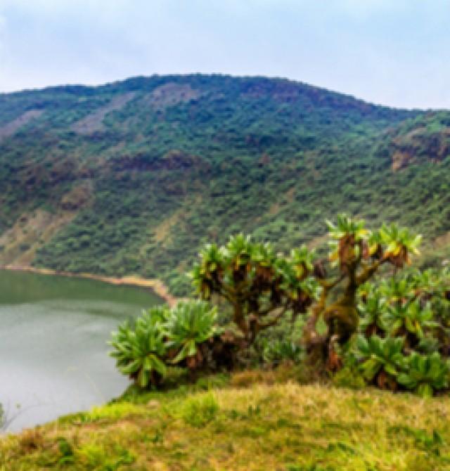 Volcán Bisoke en Uganda, Ruanda y Congo
