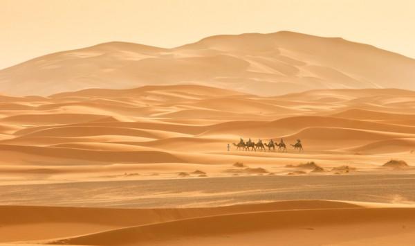 . Viaje a Marruecos con PANGEA The Travel Store