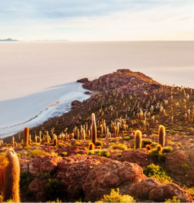 Isla Incahuasi en Bolivia