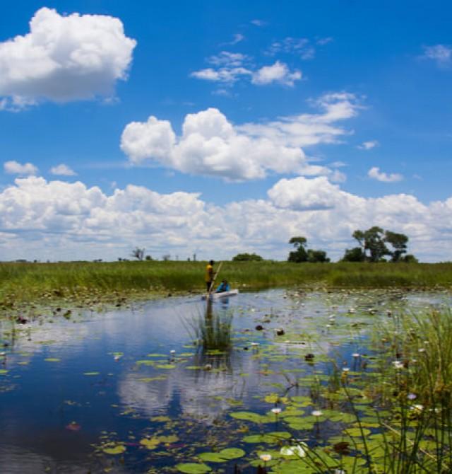 Safari acuático en Okavango