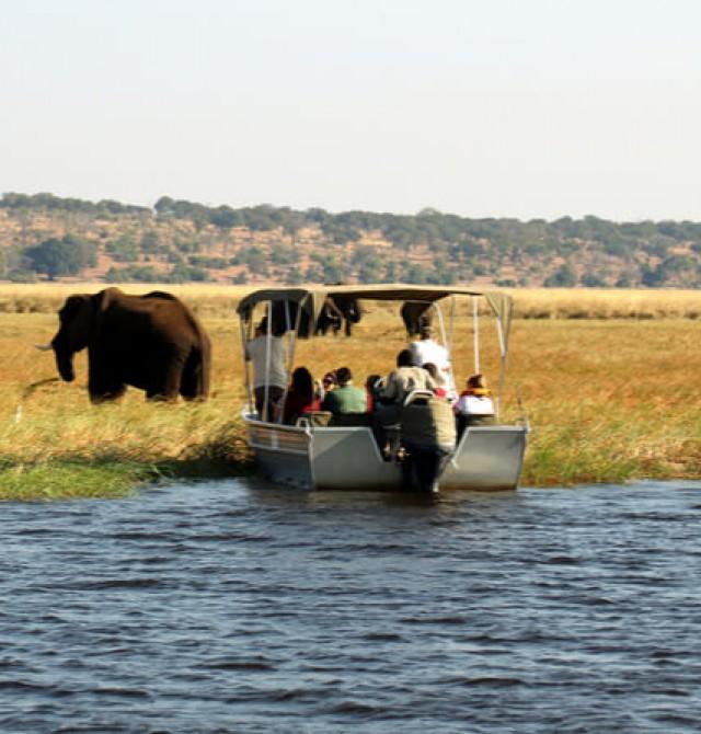 Safari acuático en Khwai