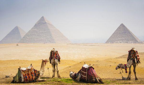 . Viaje a Egipto con PANGEA The Travel Store