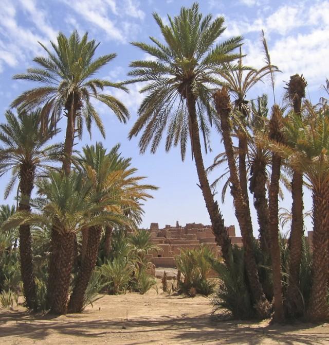 Zagora en Marruecos