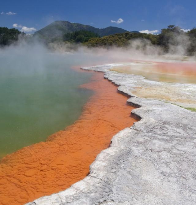Auckland - Waitomo - Rotorua en Nueva Zelanda
