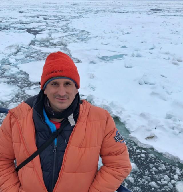 Sele en Svalbard