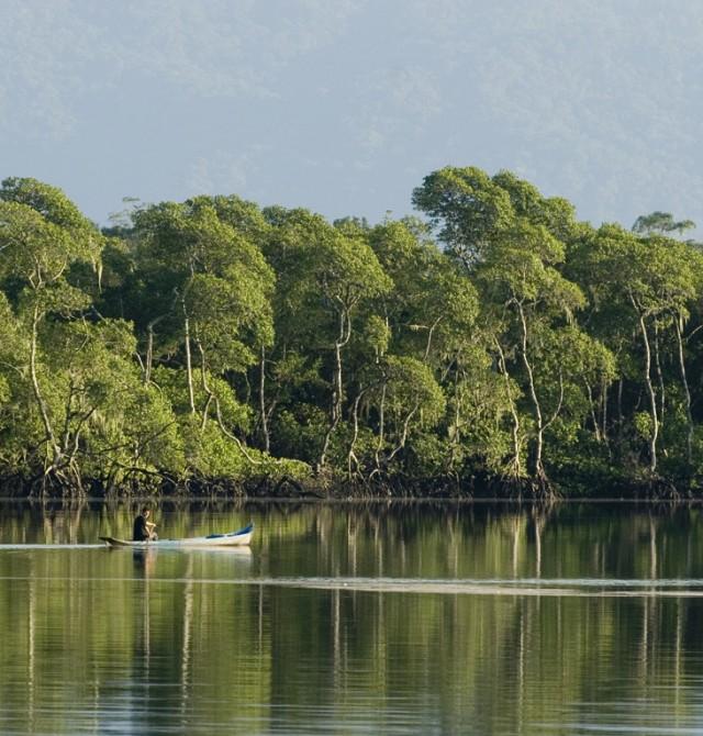 Pescar en el Amazonas