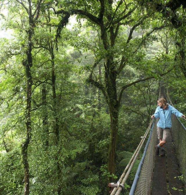 Parques naturales en Costa Rica y Panamá