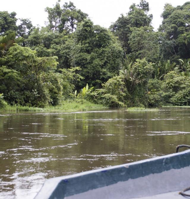 Aguas silvestres en Costa Rica y Panamá