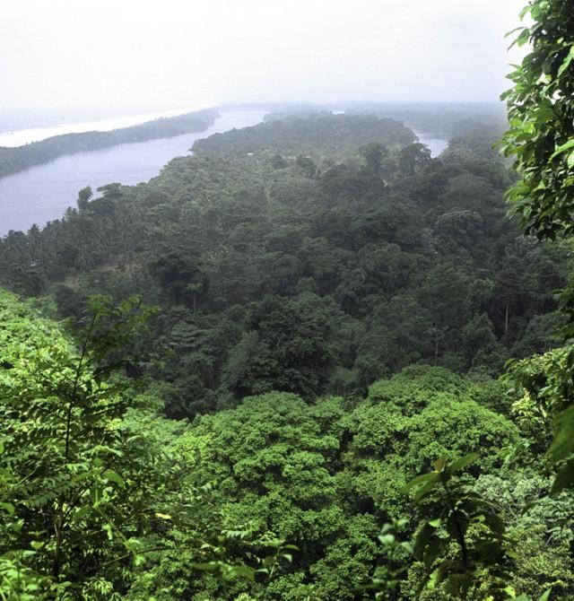 San José - Tortuguero en Costa Rica y Panamá