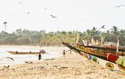 en Gambia y Senegal