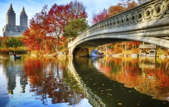 Pasea por Central Park en Estados Unidos y México