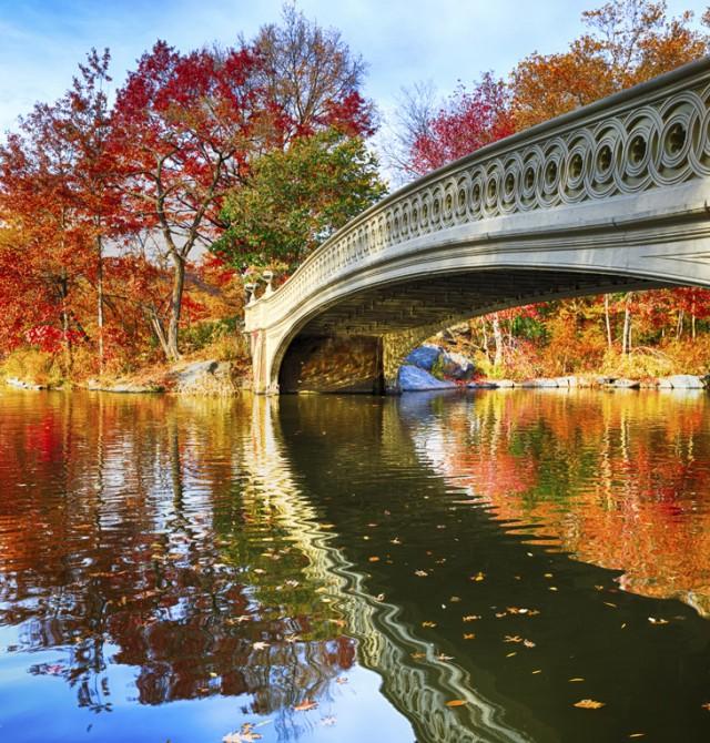 Central Park, Nueva York en Estados Unidos y México
