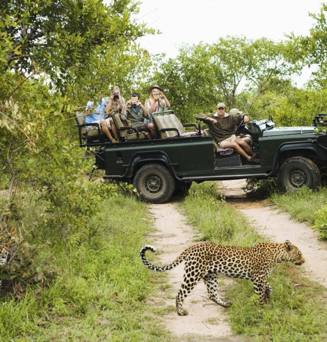 Un safari de caza fotográfica
