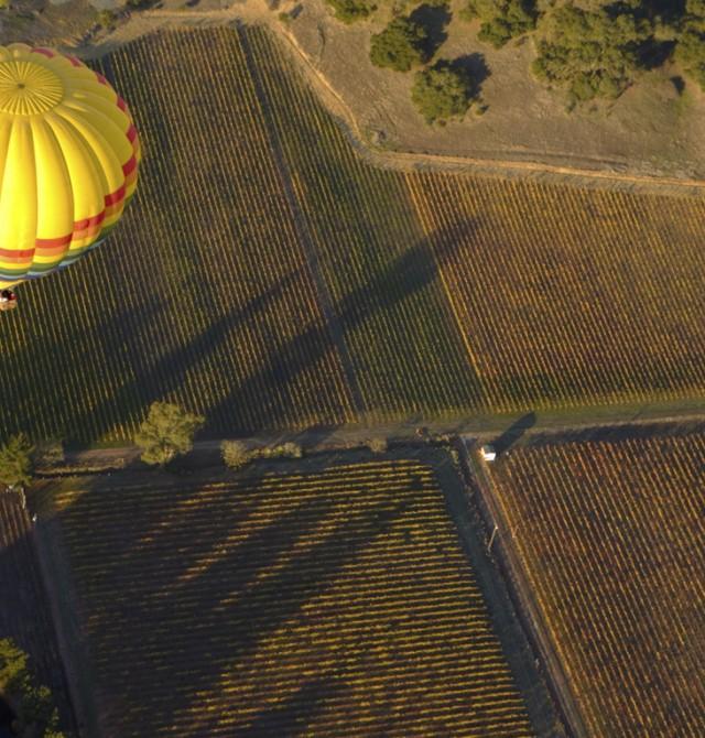 Viaje en globo sobre la Ribera del Duero
