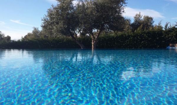 Un mar de olivos.... Viaje a Toledo, Almonacid de Toledo con PANGEA The Travel Store