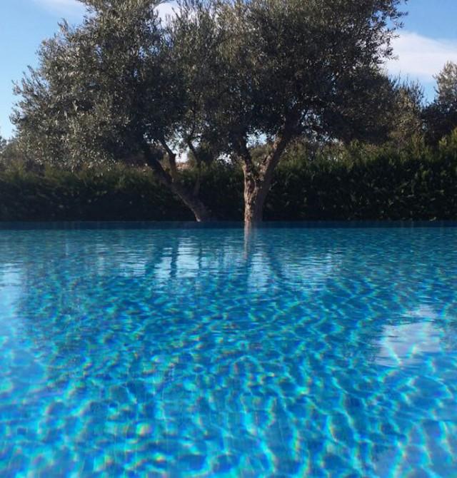 Un mar de olivos...