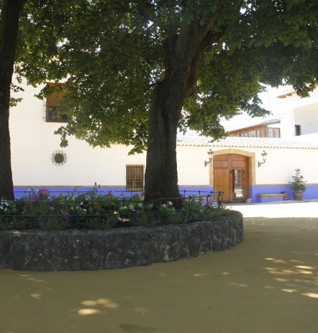 en Ciudad Real, Daimiel