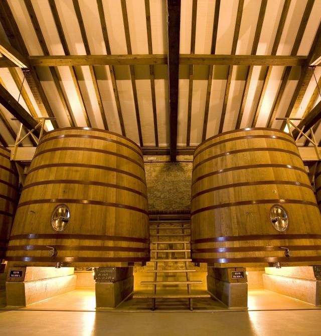 Bodegas CVNE visita en La Rioja, Azofra