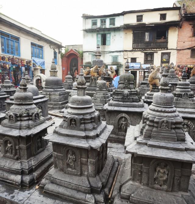 Chitwan - Kathmandú