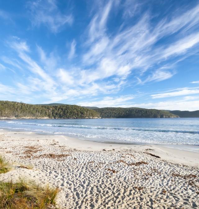 Cinco ecosistemas distintos en una isla en Australia