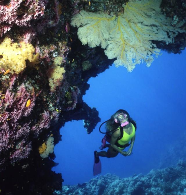 La mayor barrera de coral del mundo en Australia