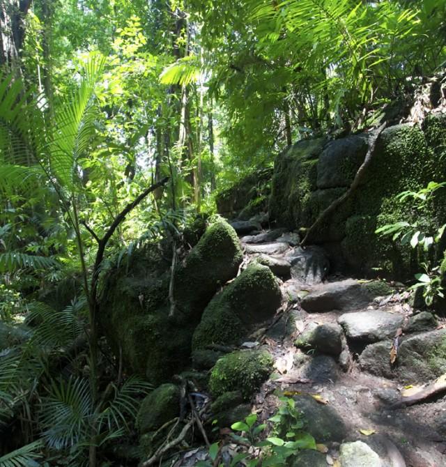 El epicentro de la vida aborigen en Australia
