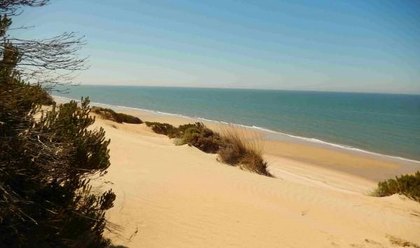 Playa de Doñana. Viaje a Huelva, Parque Nacional de Doñana con PANGEA The Travel Store