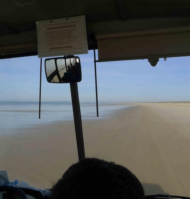 En 4x4 por la playa en Huelva, Parque Nacional de Doñana