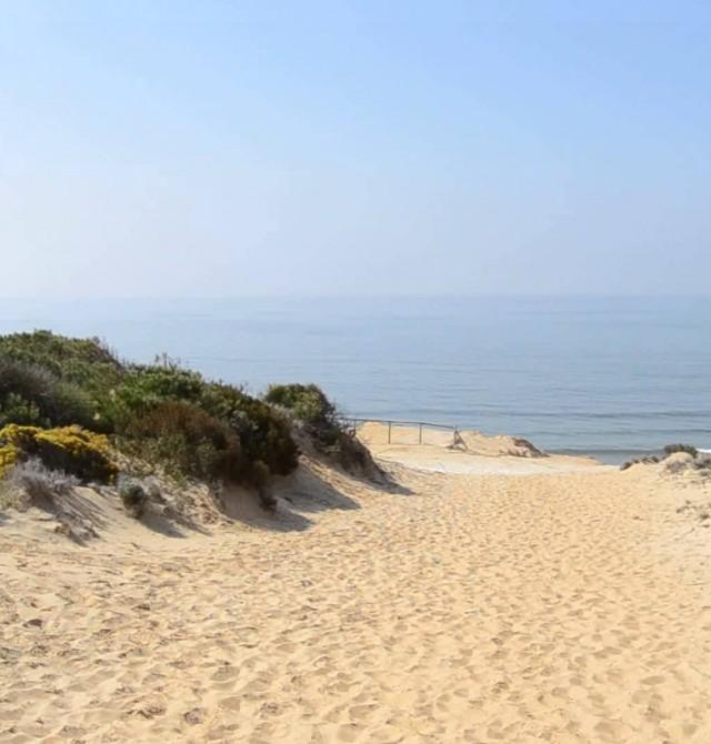 en Huelva, Parque Nacional de Doñana